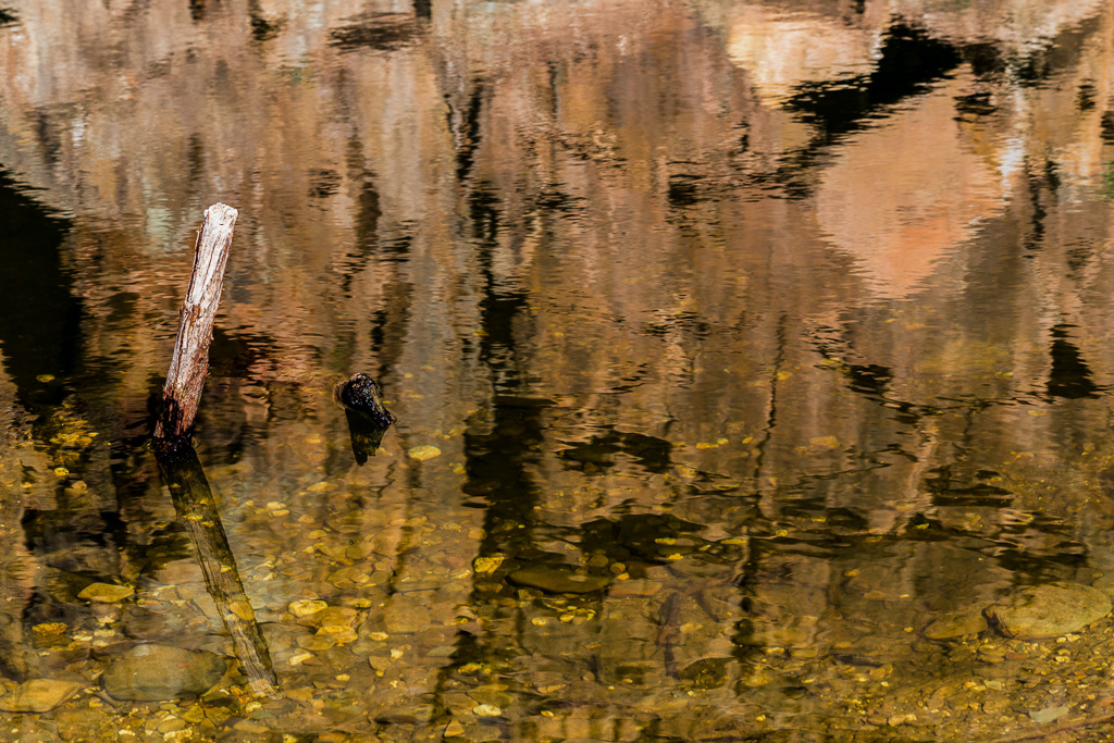 stick-reflection-lerderderg-river