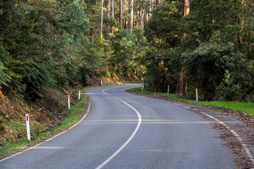 road-mount-donna-buang