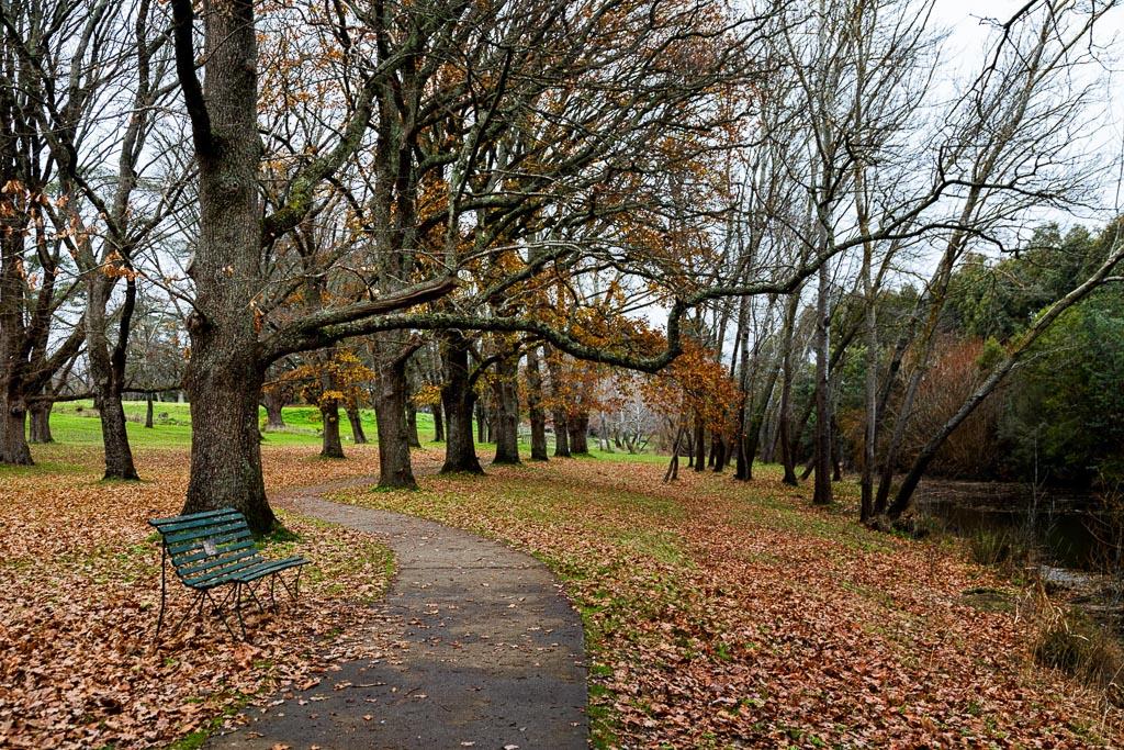 autumn-campaspe-river-kyneton