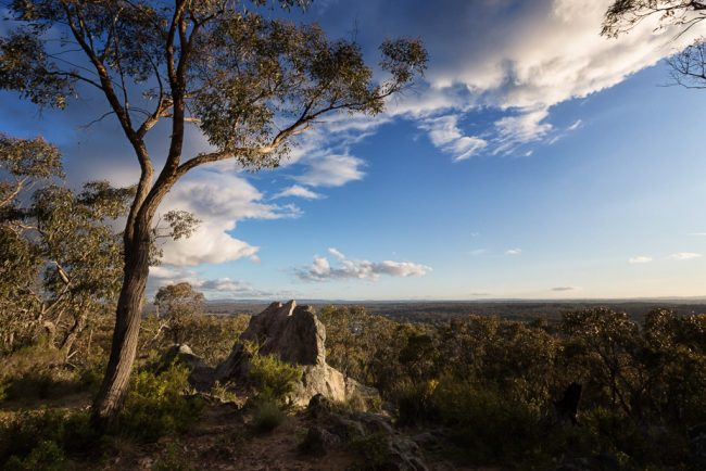 rock-lookout-mcivor-range