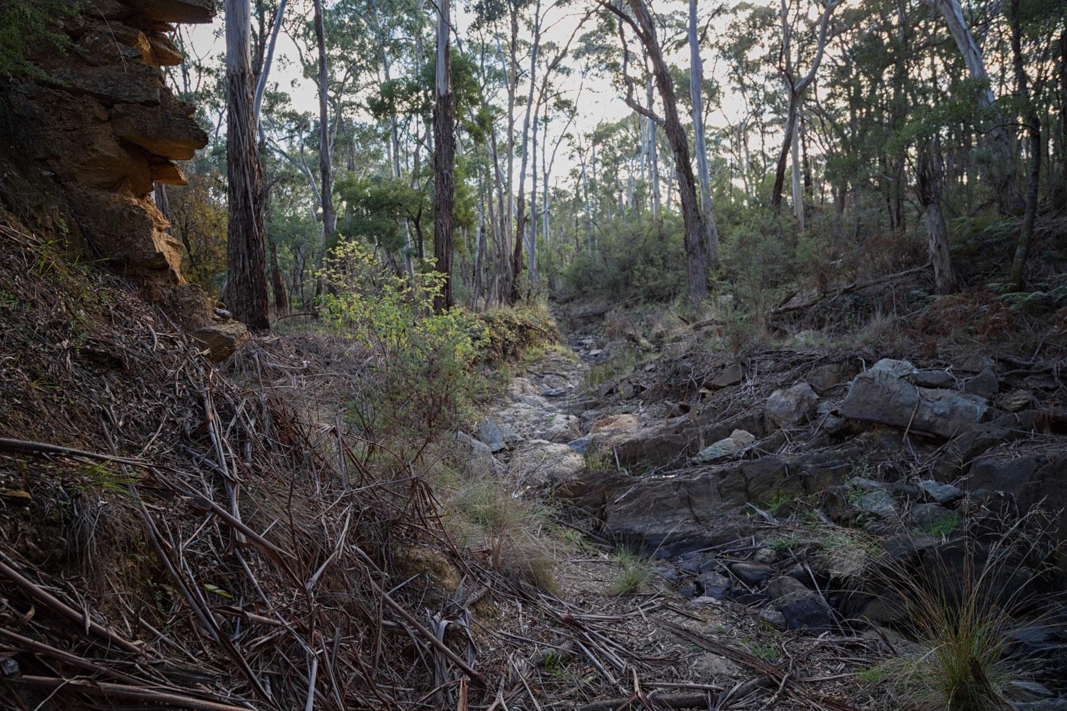 eatons-dam-creswick-creek