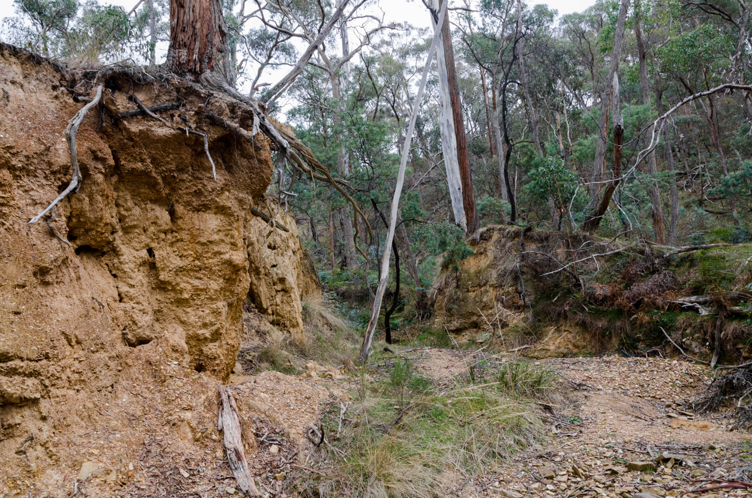 erosion-sebastapol-creek-vaughan