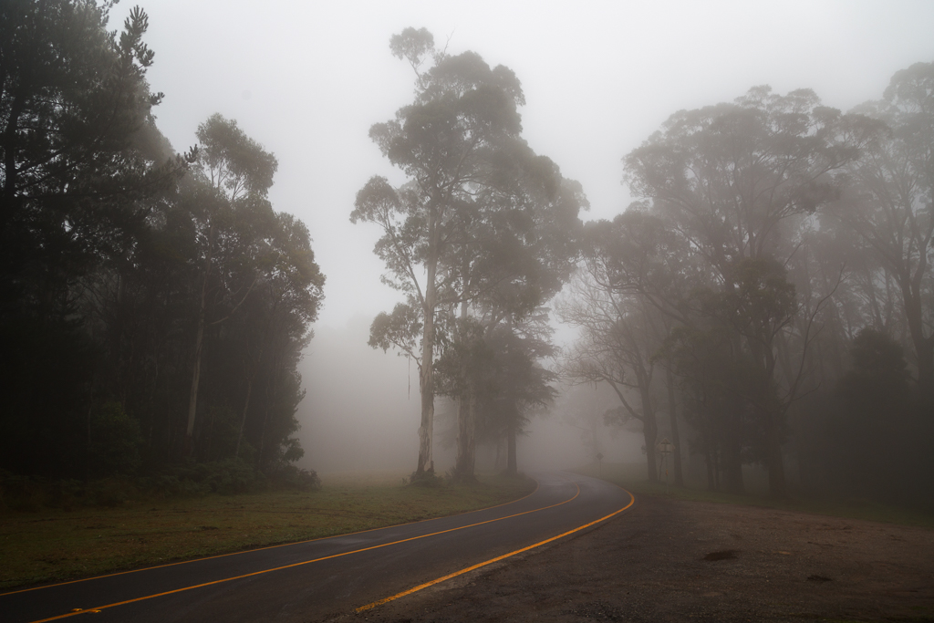 mist-over-road-macedon