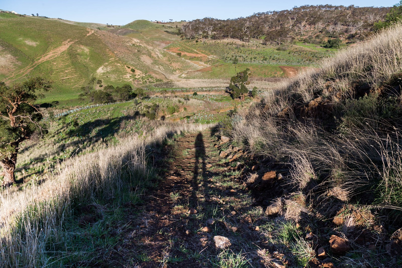 shadow-centenary-track-island-werribee-gorge