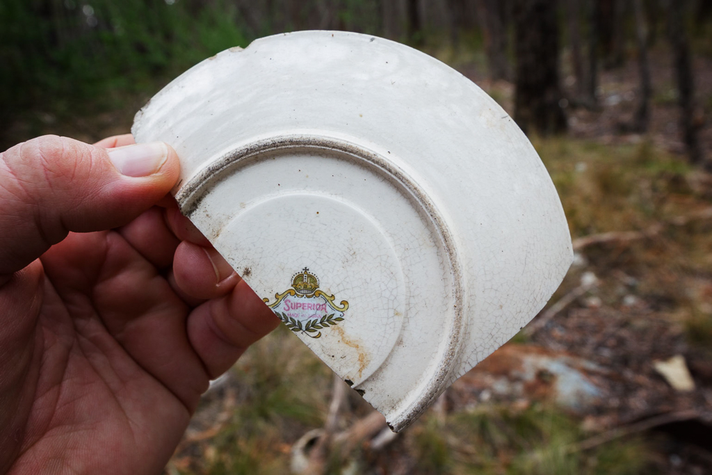 holding-broken-plate-superior