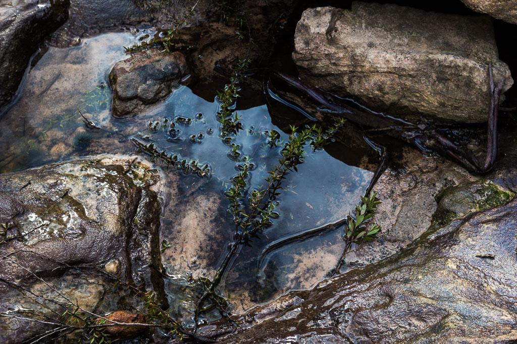 water-pool-rocks-grampians
