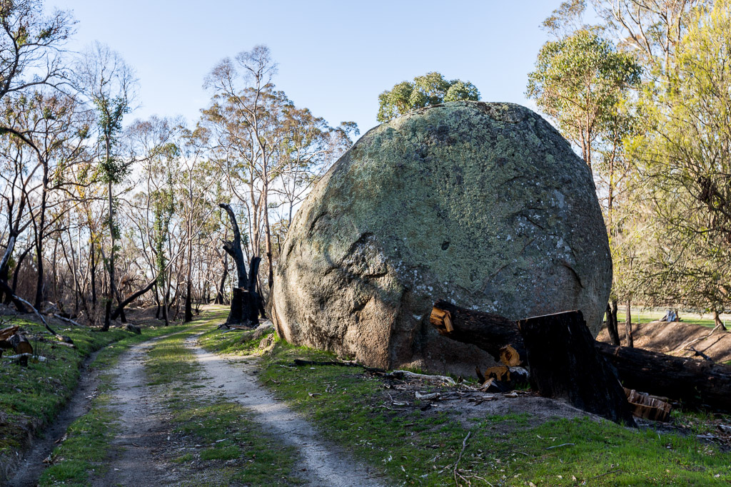 boulders-next-to-circuit-track-black-hill-reserve