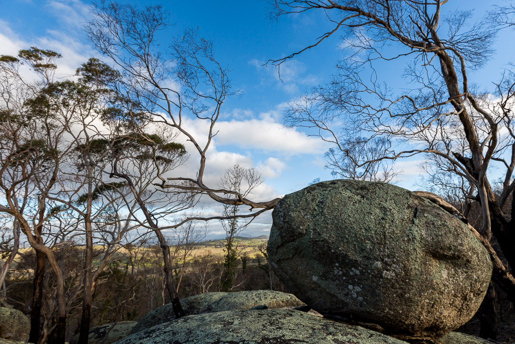 boulders-trees-ridge-track-black-hill-reserve