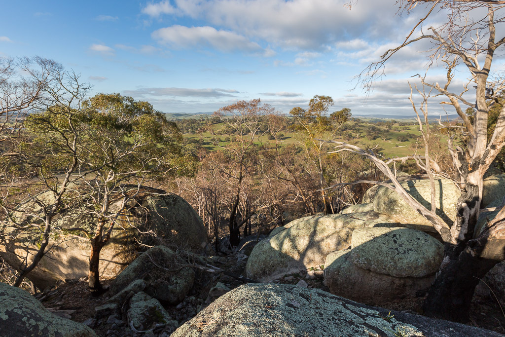 eastern-lookout-black-hill-reserve