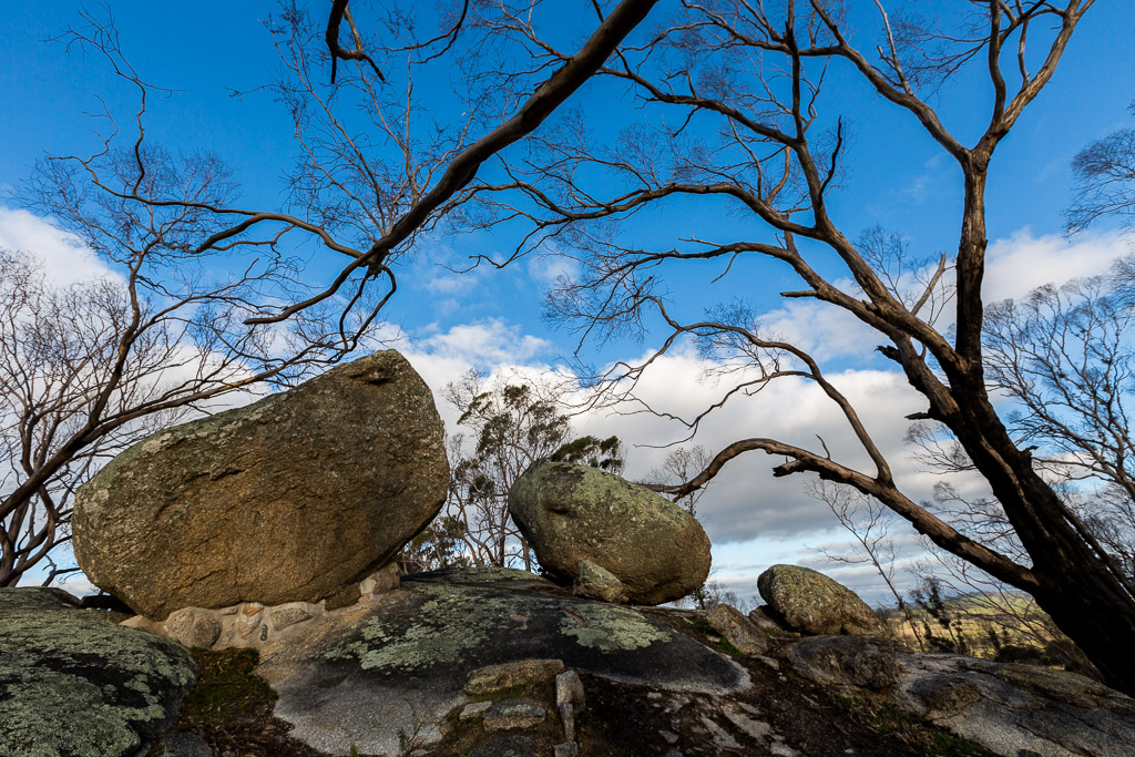 rocks-trees-ridge-track-black-hill-reserve