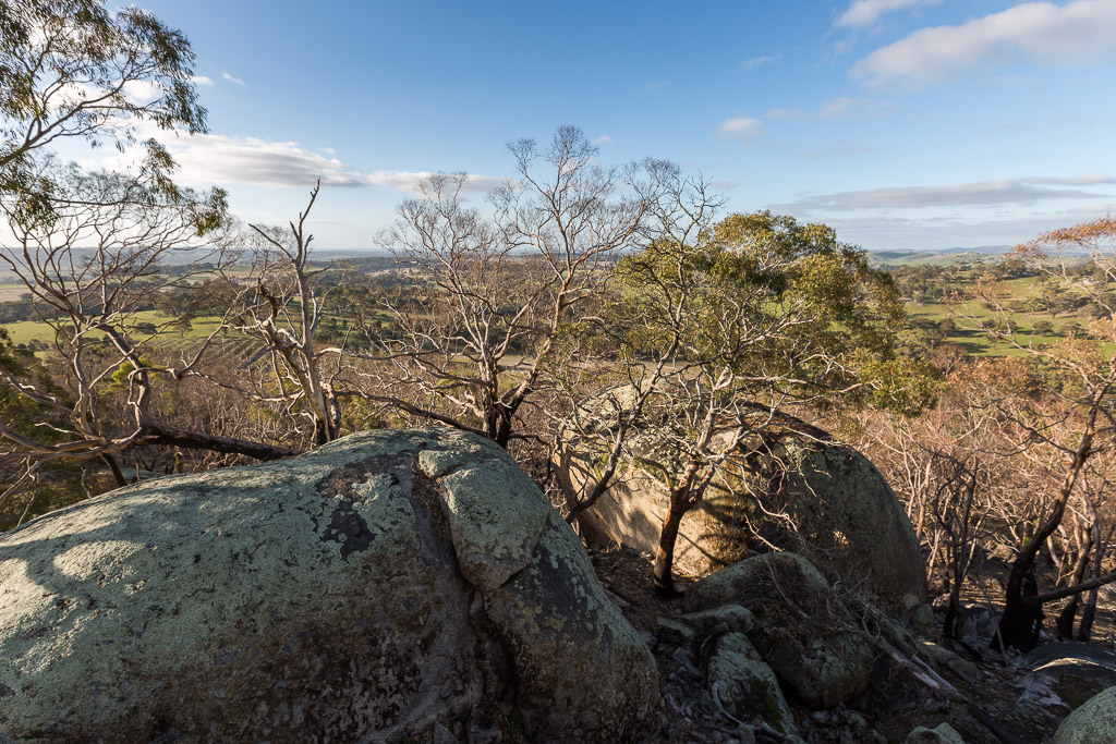 view-eastern-lookout-black-hill-reserve