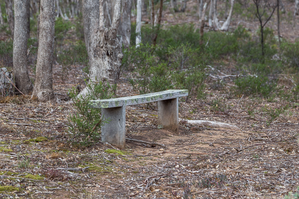 bench-seat-coimadai-creek