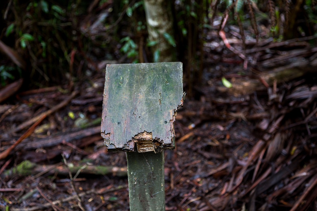 old-sign-sherbrooke-forest-dandenong-ranges