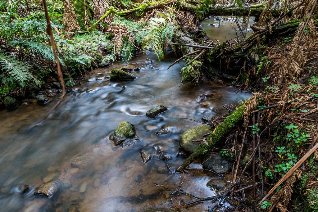 olinda-creek-dandenong-ranges