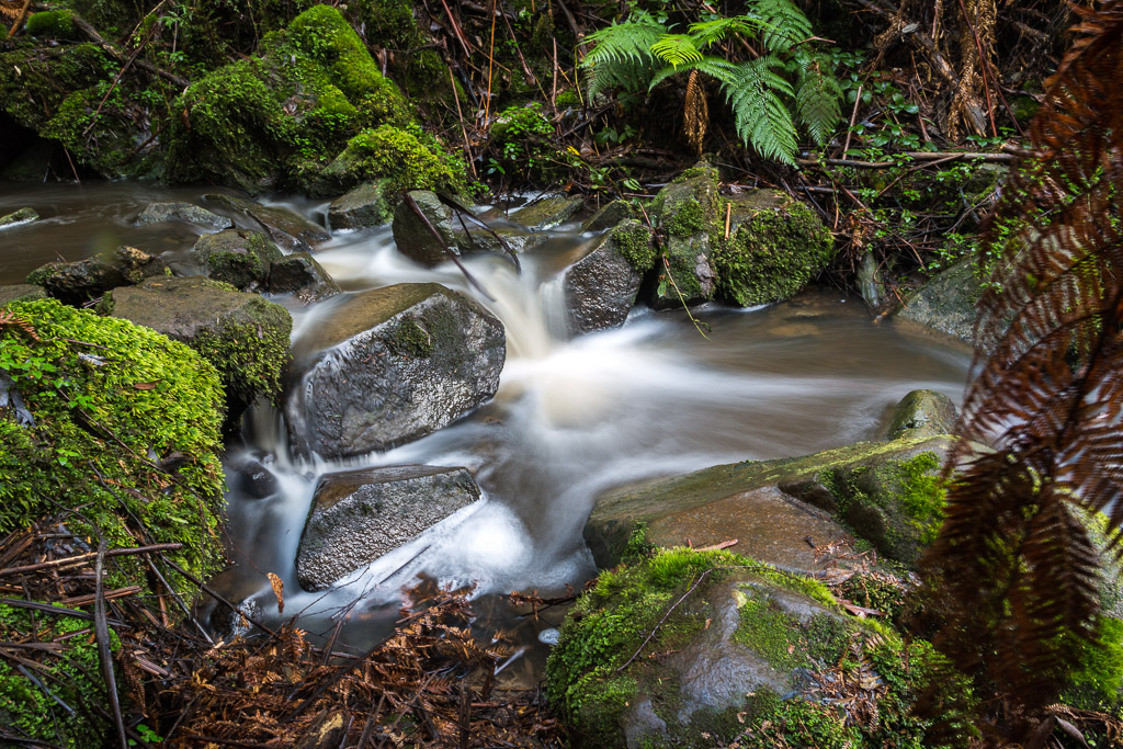 sherbrooke-creek-dandenong-ranges