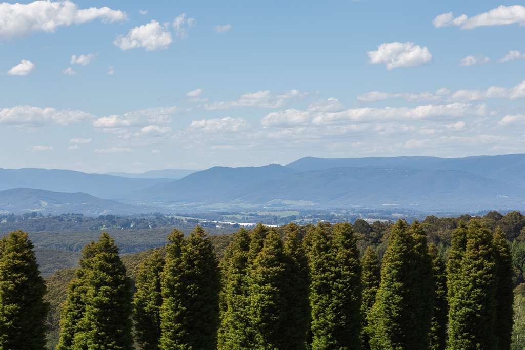 view-woolrich-lookout-olinda