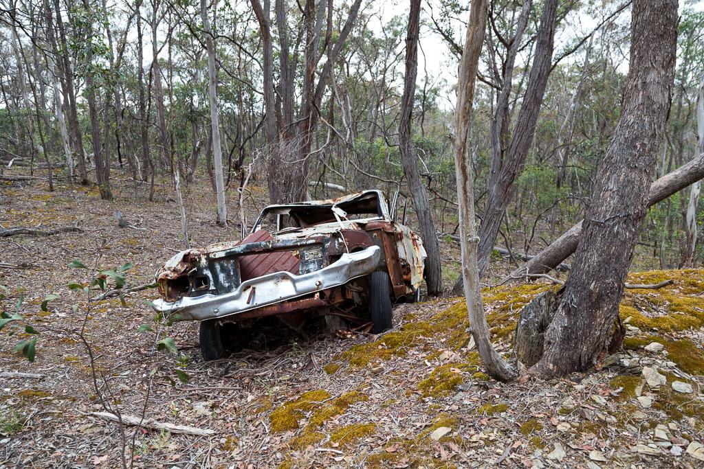 abandoned-car-wreck-steiglitz