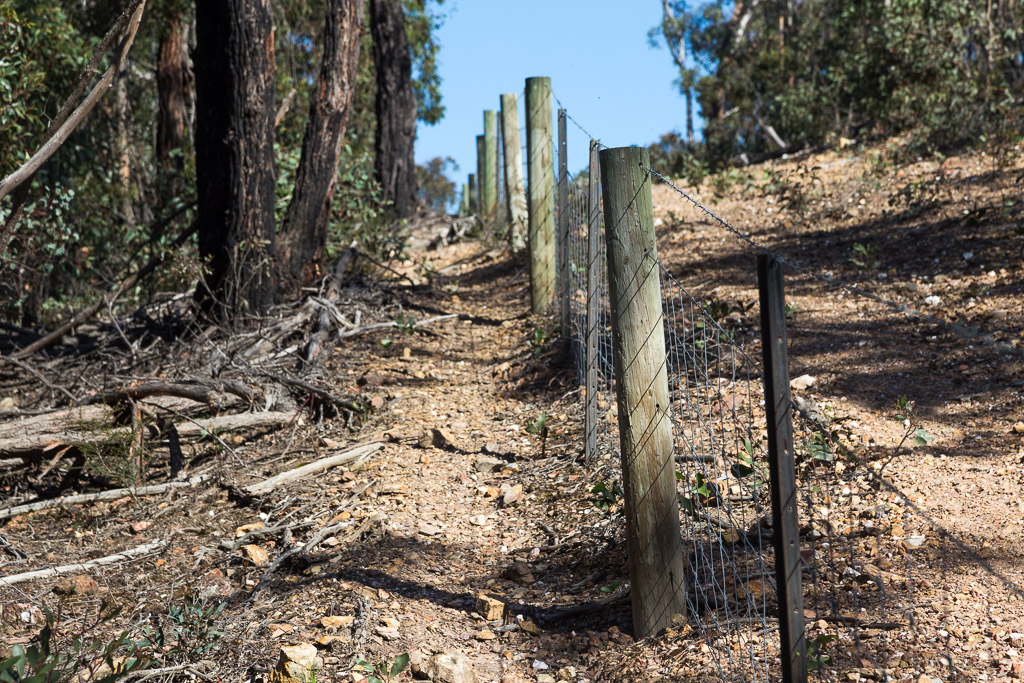 following-fence-line-hill-pyrete-range