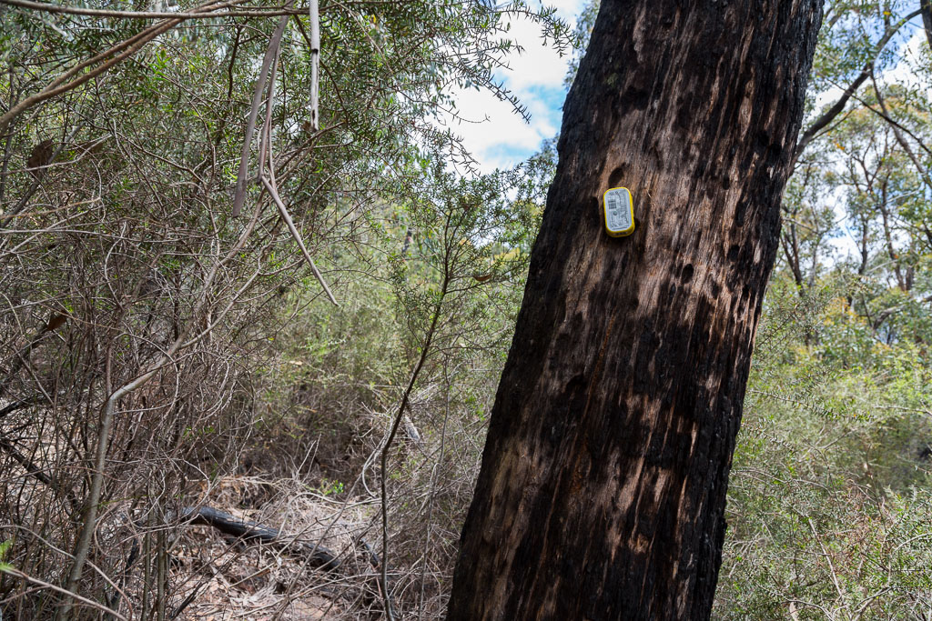 makeshift-track-marker-cathedral-rock-grampians