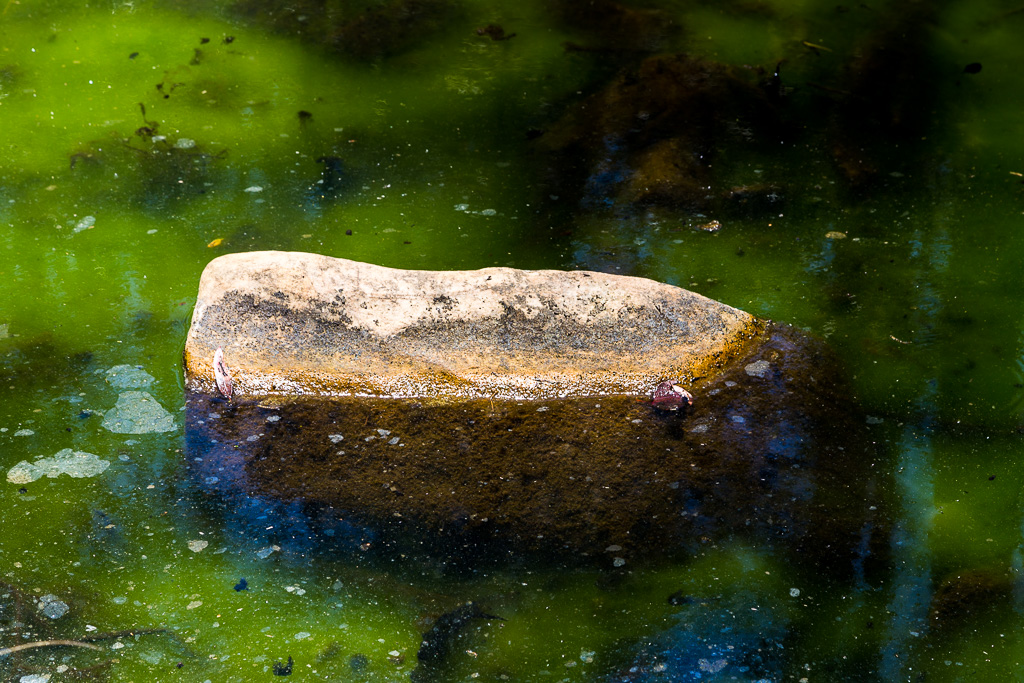 rock=green-water-pyrites-creek