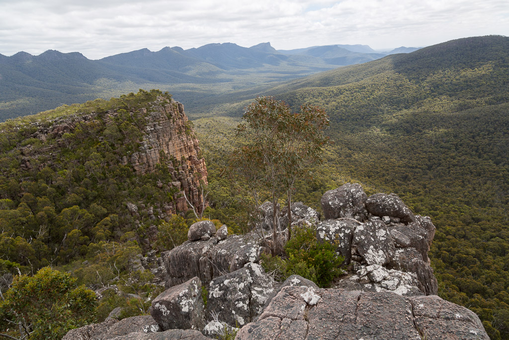 view-north-from-cathedral-rock-grampians