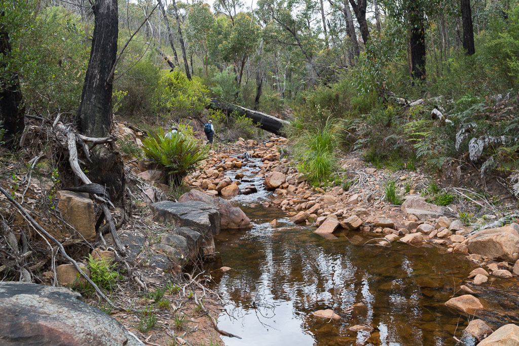 walking-creek-grampians