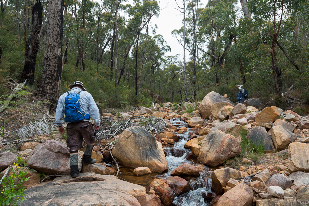 walking-up-creek-grampians
