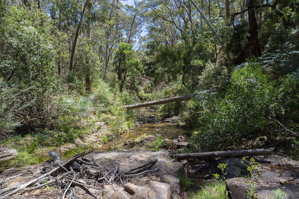 sardine-creek-lerderderg-state-park