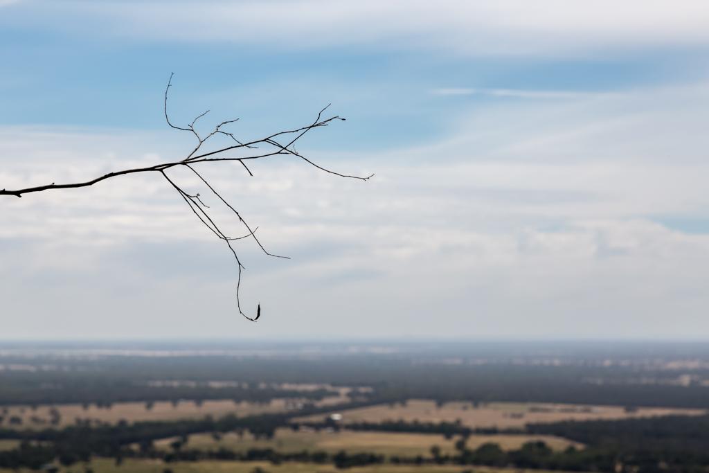 branch-sky-grampians