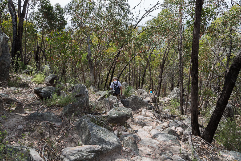 descending-boronia-peak-track-grampians