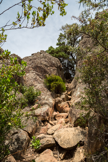 rock-gully-below-boronia-peak-grampians