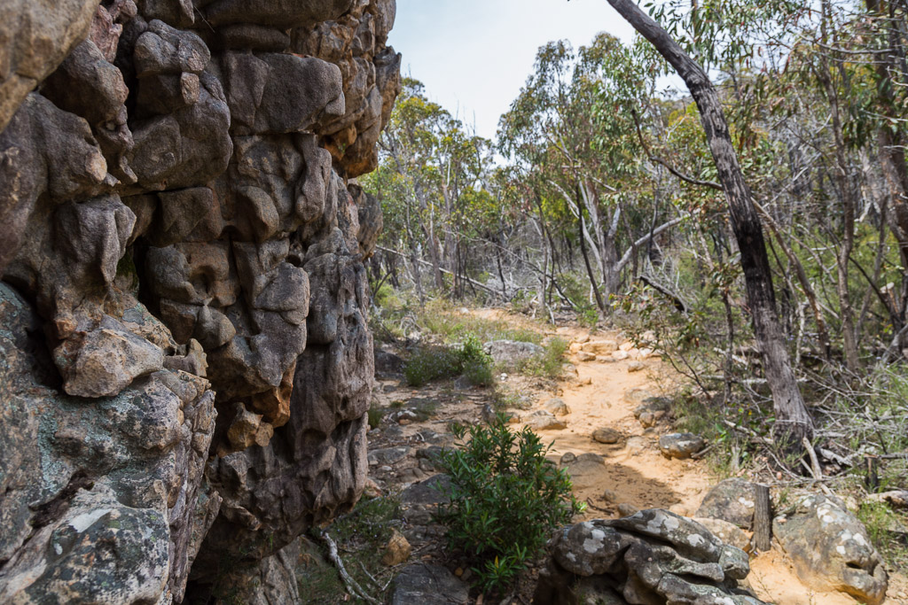 rock-wall-boronia-peak-walking-track-grampians