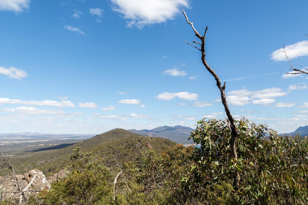 branch-ridge-mount-william-range-grampians