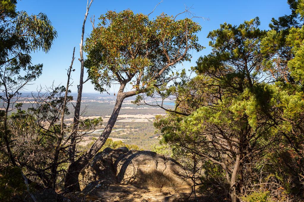 rock-trees-view-boronia-peak-grampians