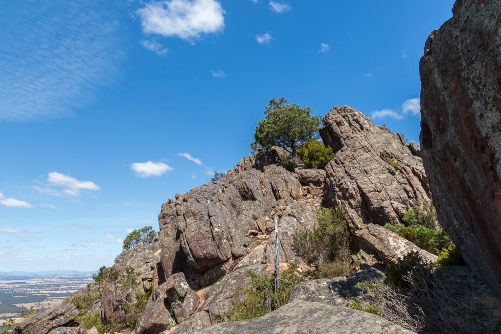 walking-mount-william-range-ridge-grampians
