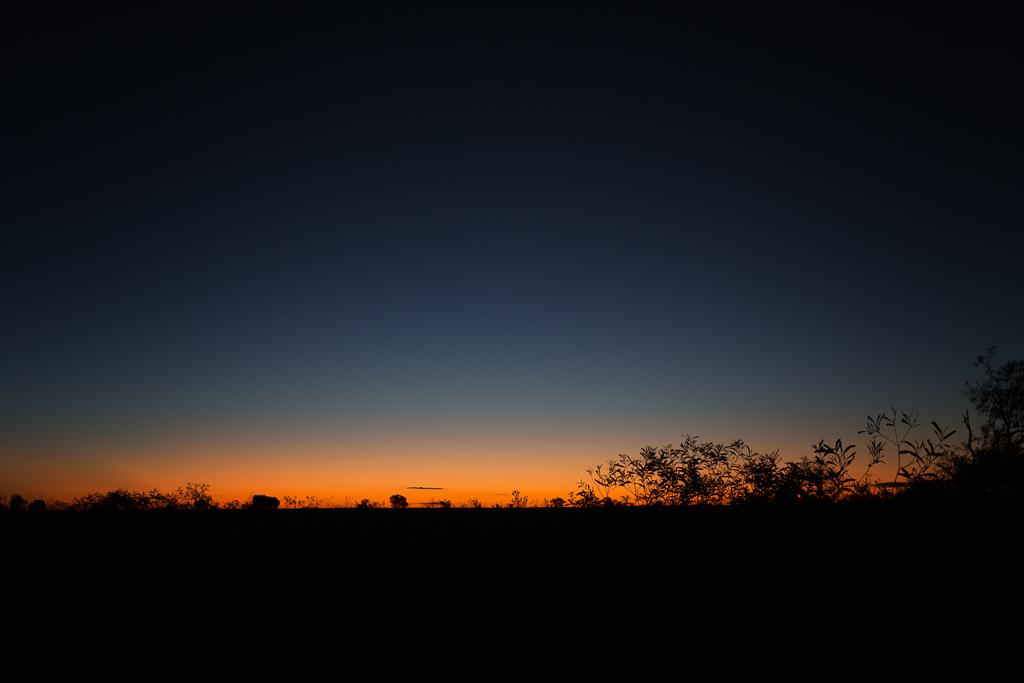 last-light-NT