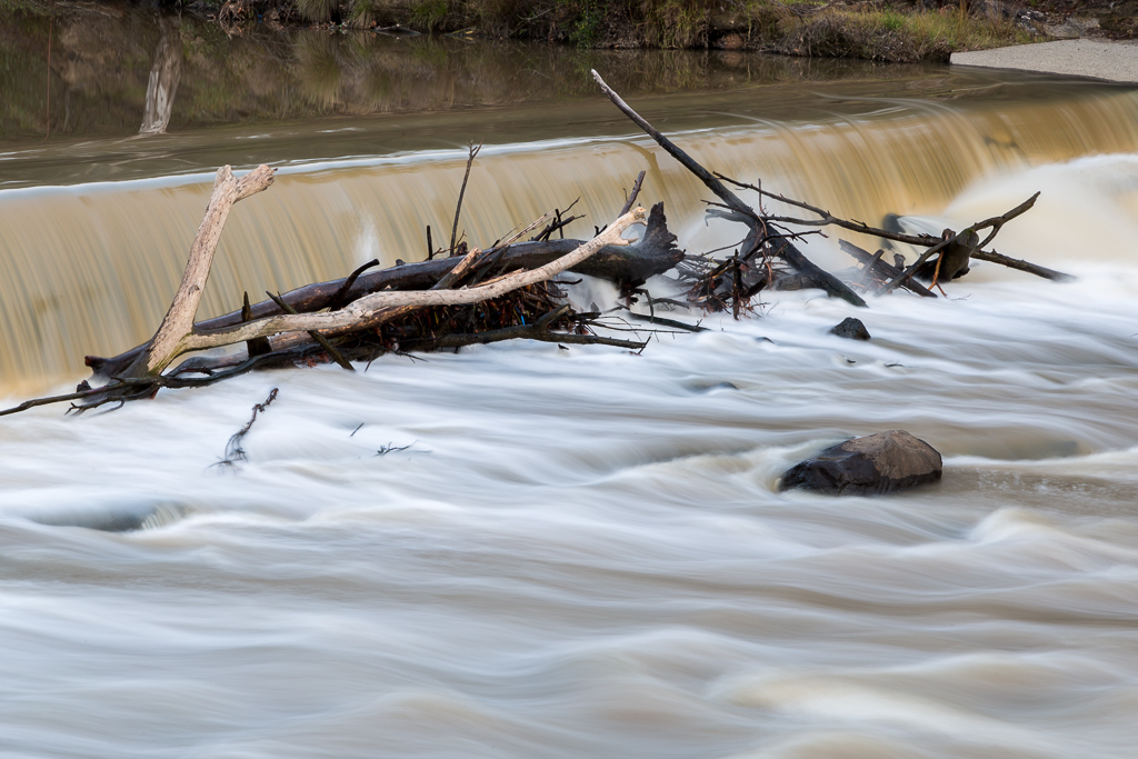 timber-log-jam-dights-falls-abbotsford