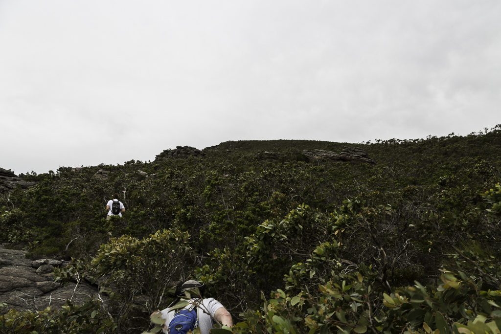 cllimbing-scrub-signal-peak-grampians-national-park