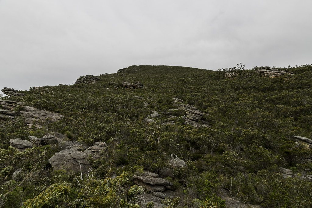 northern-approach-signal-peak-grampians-national-park