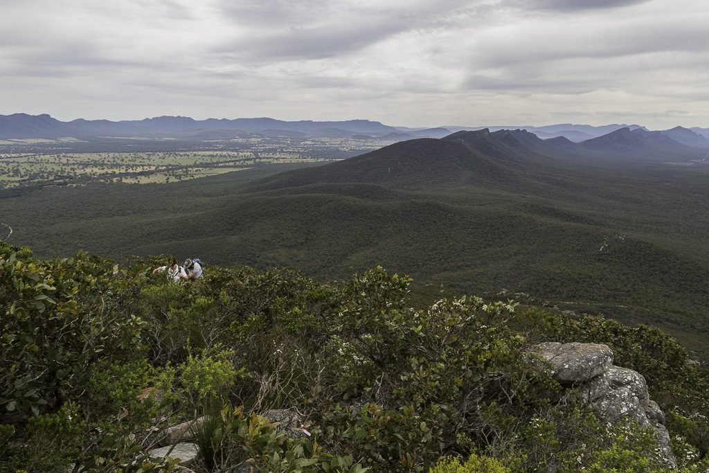 serra-range-north--signal-peak-grampians-national-park