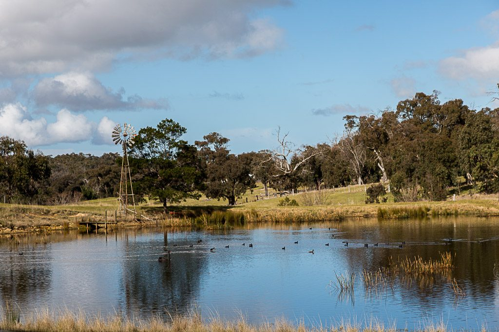 dam-brisbane-ranges-road-beremboke