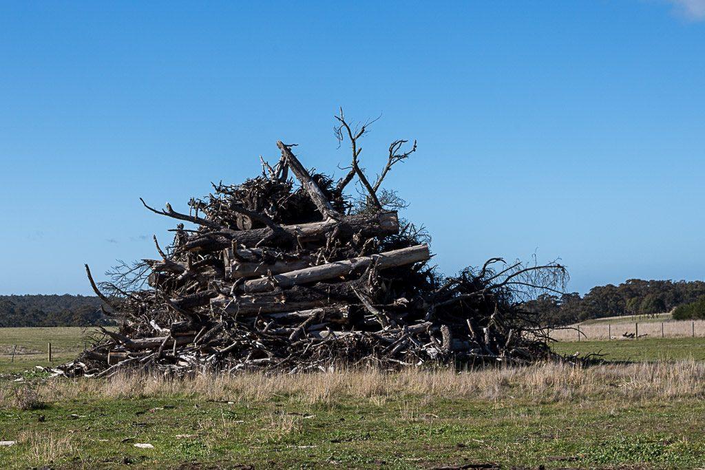 pile-branches-paddock-beremboke