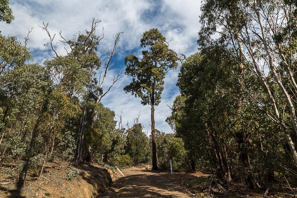 climbing-triggs-track-burchell-trail-brisbane-ranges