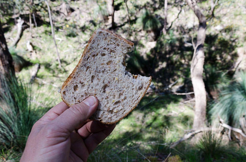 holding-vegemite-sandwich