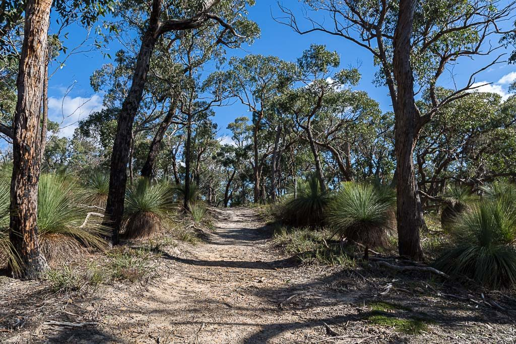 link-track-burchell-trail