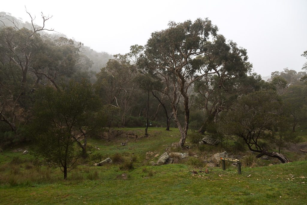 little-river-camp-morning-mist
