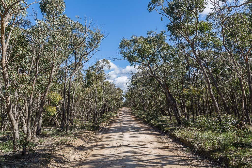mcleans-highway-brisbane-ranges-national-park