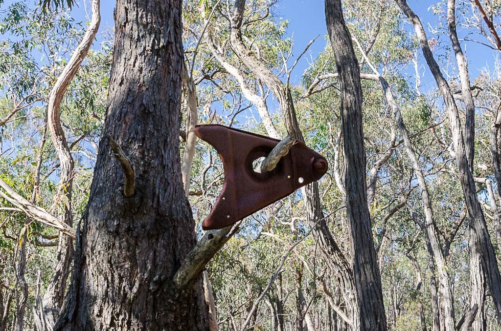 metal-in-tree-brisbane-ranges-national-park