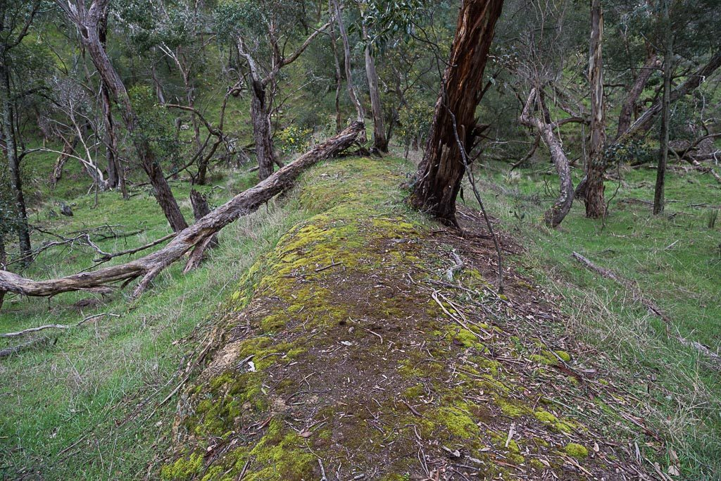 old-dam-wall-brisbane-ranges-national-park