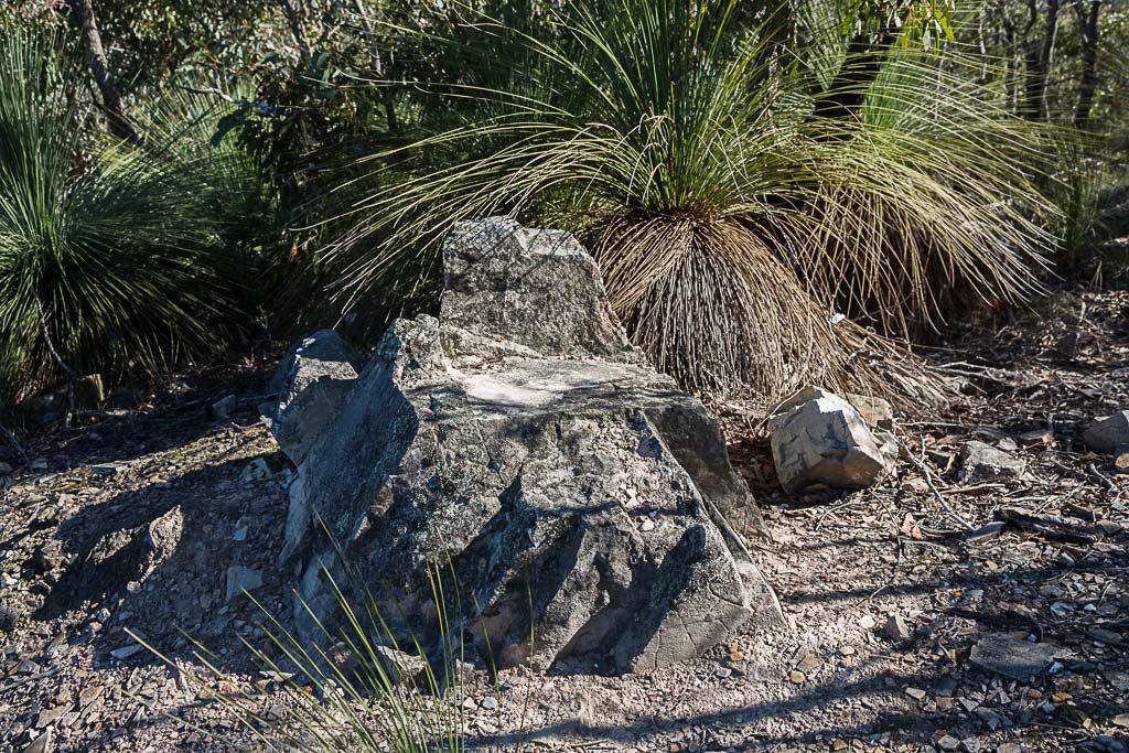 rock-quarry-track-brisbane-ranges-national-park